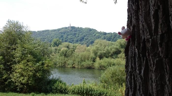 ... Rosa kletterte dann auf einen Baum (das kann sei gut) und betrachtete Maria ...